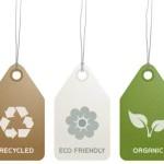Ecomarketing: La nueva frontera