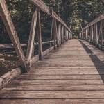 Bridge-building, crear puentes para conectar personas