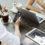 ATREVIA lanza una App para Empresas Familiares